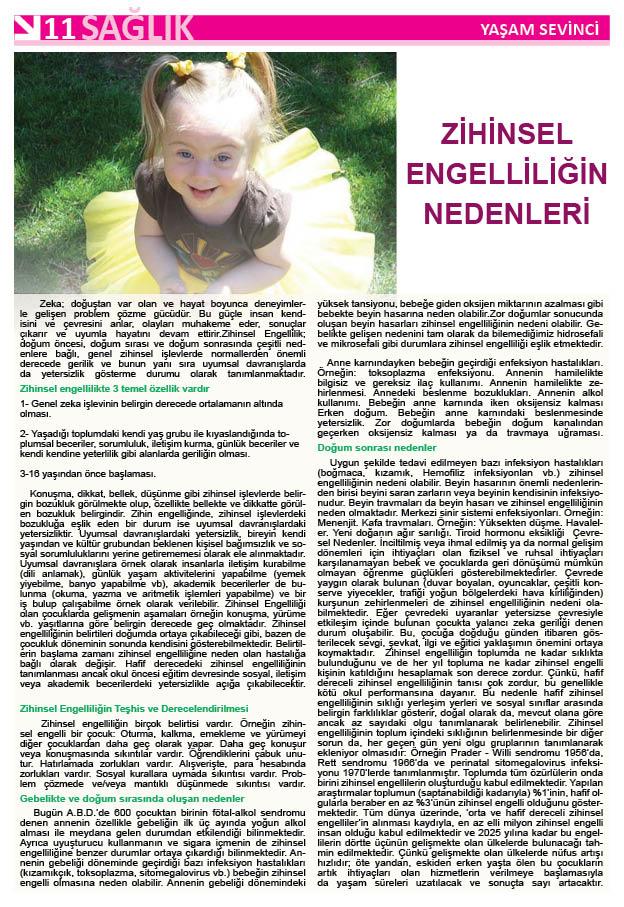 http://www.atekder.org.tr/wp-content/uploads/yasam11.jpg